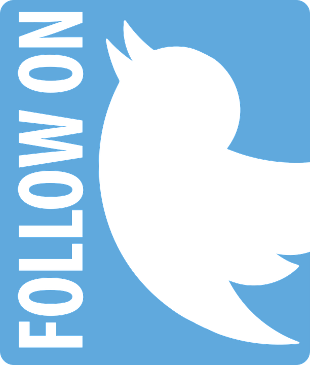 Twitter icon vector white